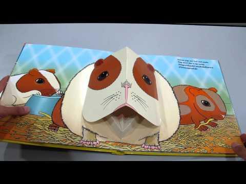 สัตว์เลี้ยง หนังสือpop-up www.KidsbookThailand.com