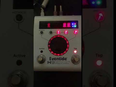 Connaître le modèle de sa H9