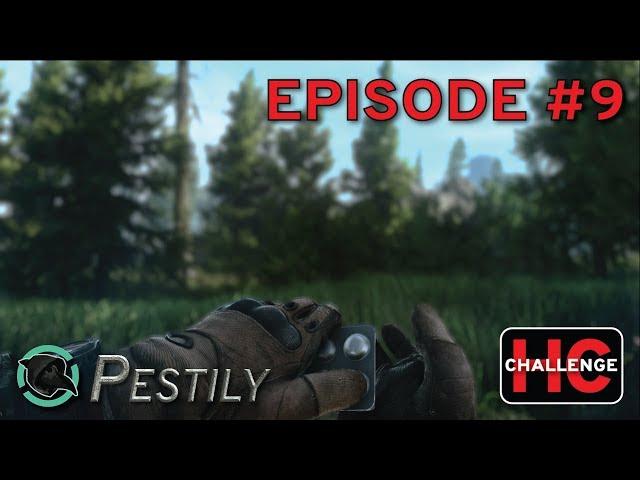 pestily video, pestily clip