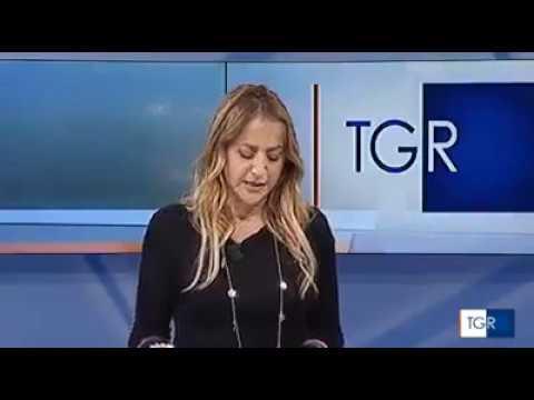 Rai TG3   Presentazione Protocollo Confindustria Amcham