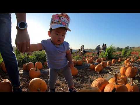 20191012 Danaka Farm Pumpkin Patch (5)