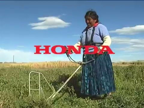 MOTOGUADAA HONDA CON KIT DE COSECHA ACC01