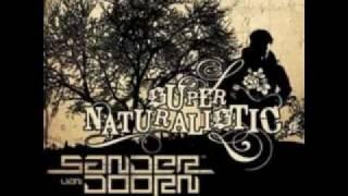 Sander Van Doorn-Pumpkin(svd remix)