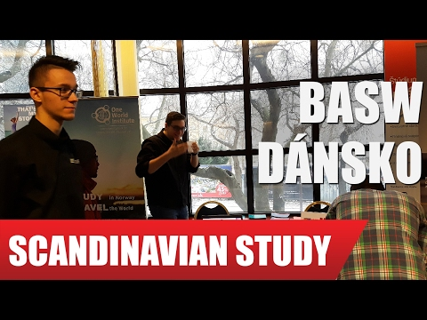 Business Academy South West (DK) so Scandinavian study