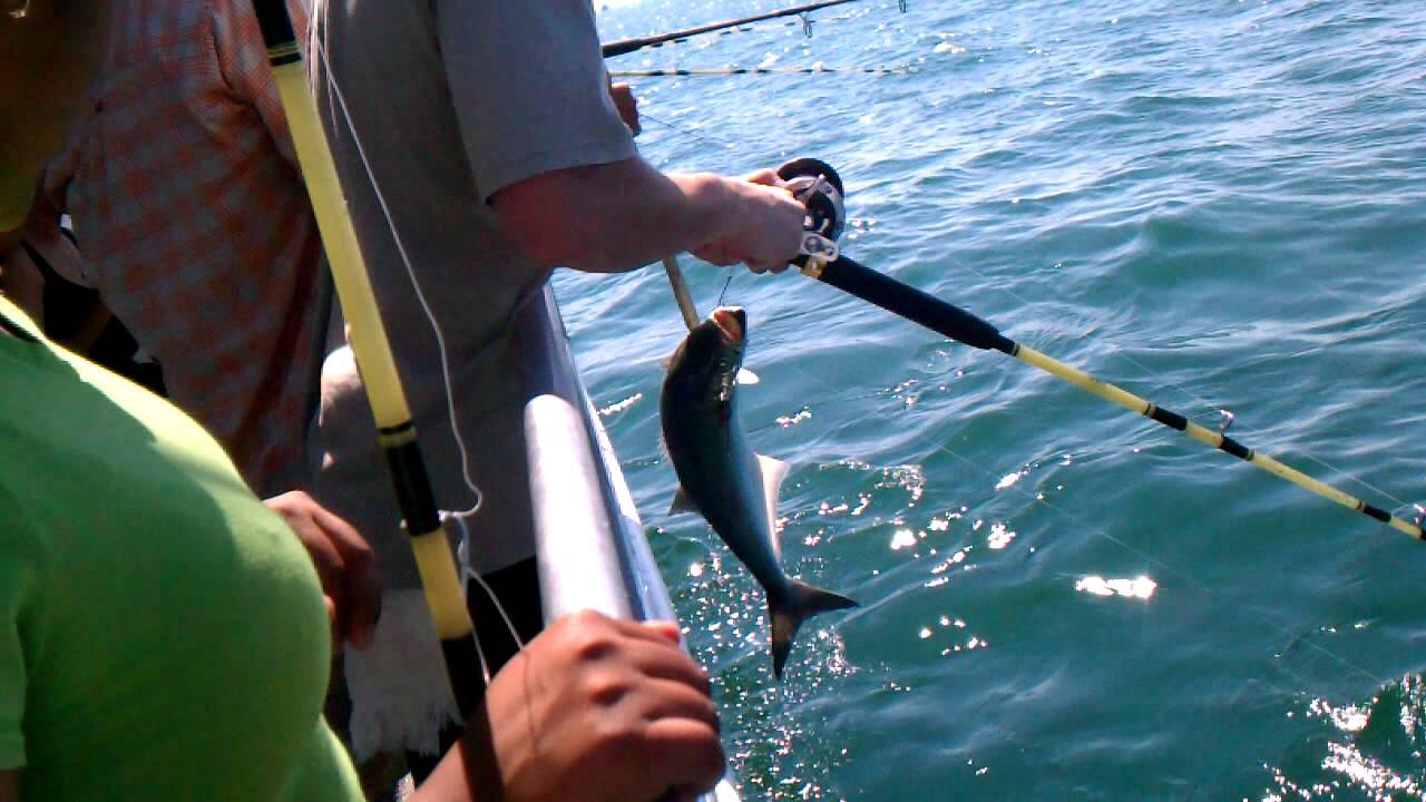 Fishing on miss belmar youtube for Miss belmar fishing report