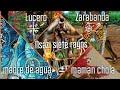 Mpungos de Palo Mayombe Lucero, Zarabanda,Cholan Wengué,Madre de Agua y Nsasi Siete Rayos parte 1