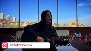 Elif Türkyılmaz - Hepsi Geçiyor Resimi
