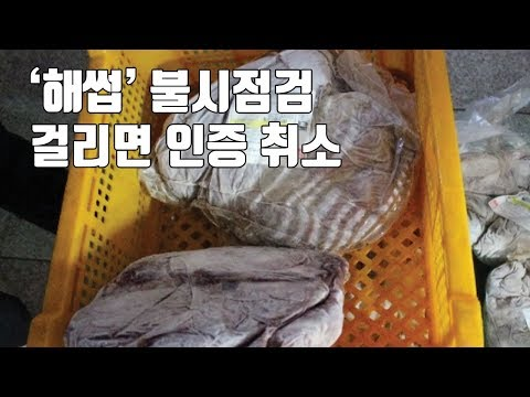 '해썹' 불시점검...걸리면 인증 취소 / YTN