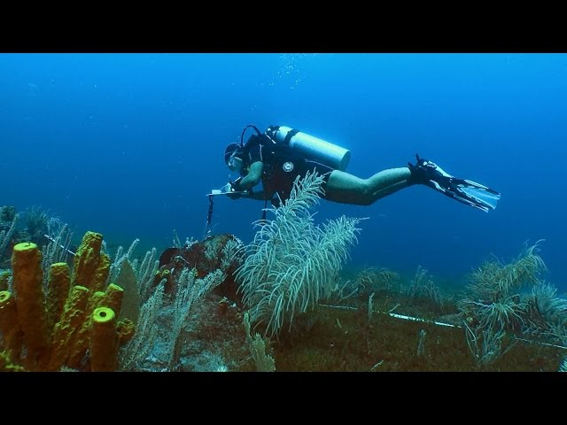 Promo video: St Eustatius National Parks Foundation (marine park)