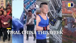 Viral China this week: 70-year-old Chinese bodybuilder says he's stronger than most young people