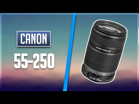 How to repair Canon lens EF-S 55-250mm  f/4-5.6 IS STM - zoom problem, sand inside