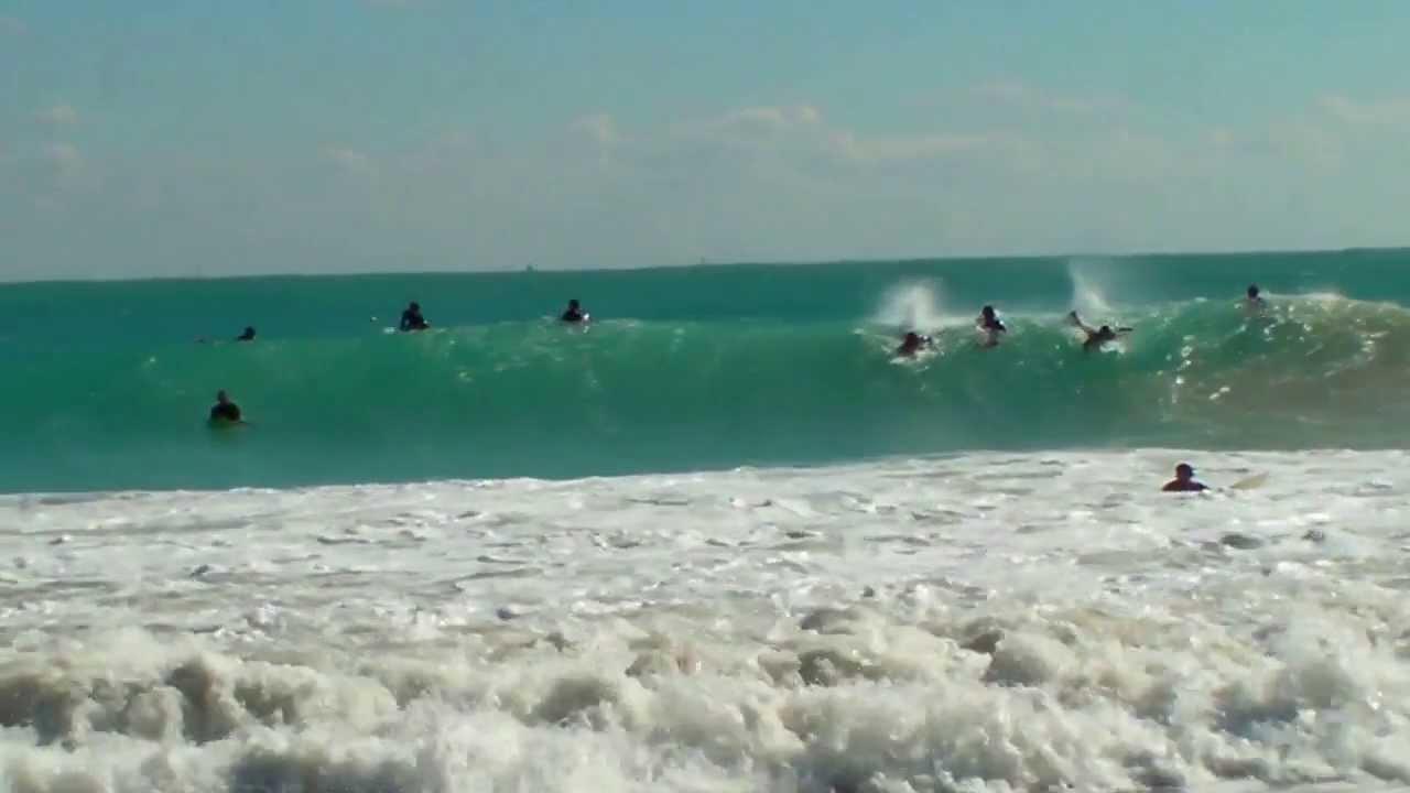 Sharks South Beach Miami