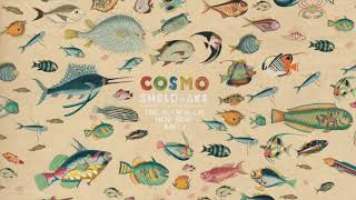 Cosmo Sheldrake - Come Along (Instrumental)