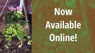 Hemp Sense USA - Hemp Fibril Soil Enricher