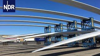 Rostock Port - Ein Tag im Hafen | die nordstory | NDR