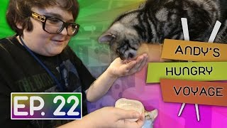 Andy Milonakis Visits A Cat Cafe! | Andy's Hungry Voyage