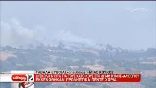 Μάχη με τις φλόγες στην Εύβοια – Εκκενώθηκαν χωριά   05/07/2019   ΕΡΤ