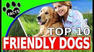 TopTenz: Top 10 Friendliest Dog Breeds 10 Family Friendly Dogs 101 - Animal Facts