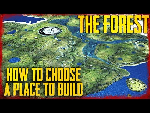 10 TIPS ON CHOOSING A PLACE TO BUILD IN THE FOREST!