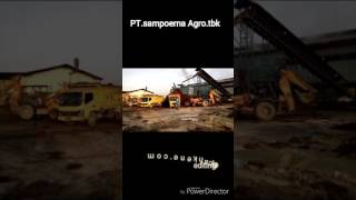 Download Video PT.sampoerna agro.tbk kalteng. MP3 3GP MP4