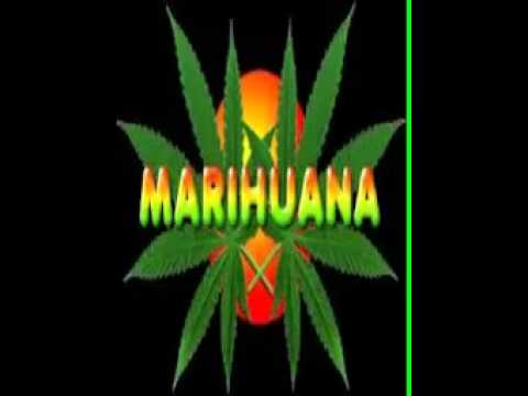 yo fumo marihuana desde los 14 cultura profetica