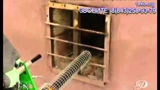 Как уничтожить клопов в квартире(Как уничтожить клопов в квартире самостоятельно или лучше обратиться в специализированную организацию?..., 2013-08-01T07:45:13.000Z)