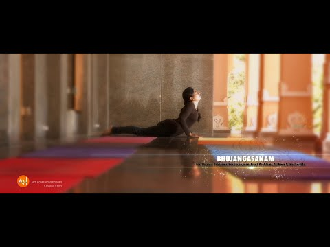 Yoga N Curves TVC 2015