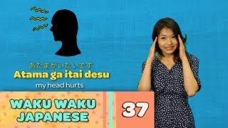 Waku Waku Japanese - Language Lesson 37: Feeling Sick