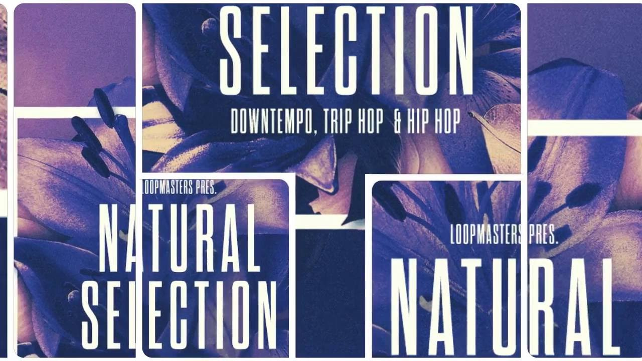 Natural Selection - Downtempo Chillout Samples & Loops - By Loopmasters #1