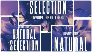 Natural Selection - Downtempo Chillout Samples Loops - By Loopmasters
