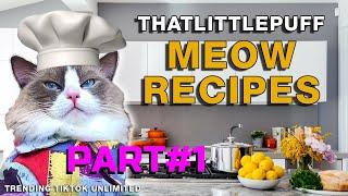 Funny Cat TikTok That Little Puff Meow Recipe #1  Trending TikTok