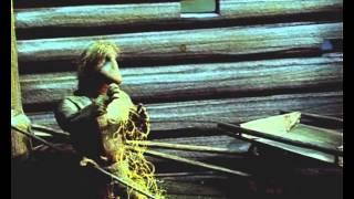 В гостях у деда Евлампия (1 серия) (1992) фильм смотреть онлайн