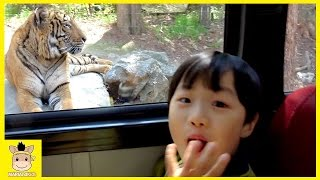 indoor playground for Kids ANIMALS AT THE outdoor ZOO Family Fun Trip play | MariAndKids Toys