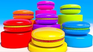 Learning Colors with Macaron for Kids and Children
