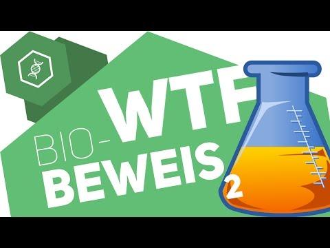 Aminosäuren, Nukleinsäuren, Hormone, Enzyme -  Biomoleküle WTF?! 2