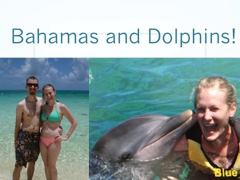 SWIMMING WITH DOLPHINS! | Bahamas Travel Vlog {July 2014}