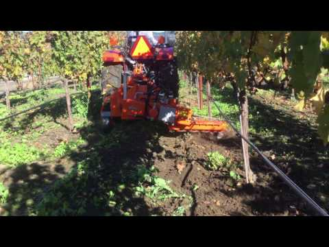 Mechanical weed control