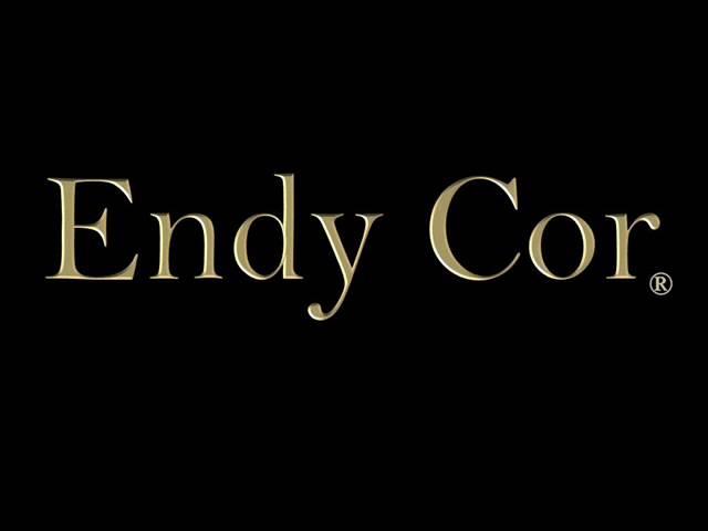 Endy Cor -  Canon in D ( Short demo )