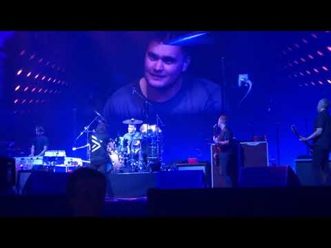 Frank the Tank - Foo Fighters Fan Crushes Drum Performance During Massive Concert