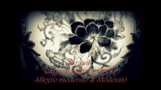 Sarasate (サラサーテ, カルメン幻想曲, 序曲&Ⅰ) Carmen Fantasy, Op.25, Allegro moderato & Moderato