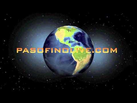 PASO FINO LIVE GLOBE