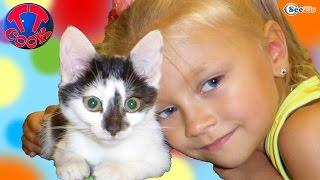 Ярослава играет с котенком. Видео для детей. Котенок Барсик - новый питомец Ярославы