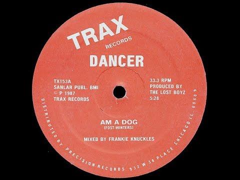 Dancer   Am A Dog