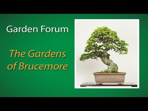 Project Green: The Gardens of Brucemore