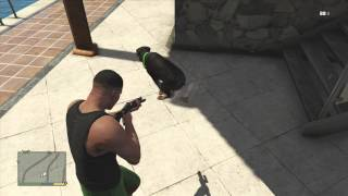 GTA 5 Dog (Chop) Taking a PooP