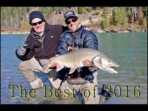 The Best Of fishing Season 2016 Fernie, B.C.