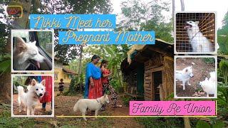 നിക്കി പ്രെഗ്നന്റായ അമ്മയെ കാണാൻ പോയപ്പോൾ   Nikki Meet her Pregnant Mother   Puppy's Family ReUnion