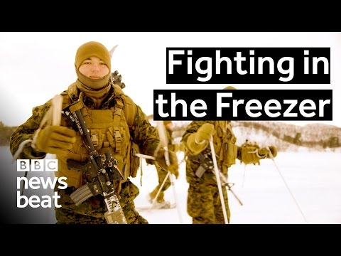 Fighting in the Freezer  |  BBC Newsbeat
