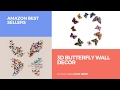 3d Butterfly Wall Decor Amazon Best Sellers