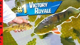 fish-battle-royale-strongest-fish-rules-the-pond